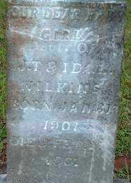 WILKINS, INFANT DAUGHTER - Logan County, Arkansas   INFANT DAUGHTER WILKINS - Arkansas Gravestone Photos