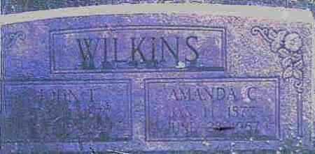 WILKINS, AMANDA CAROLINE - Logan County, Arkansas   AMANDA CAROLINE WILKINS - Arkansas Gravestone Photos