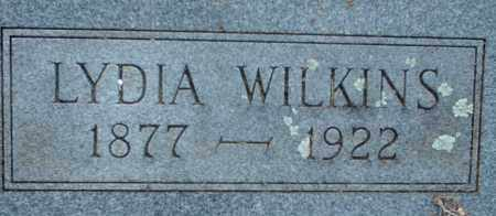WILKINS, LYDIA - Logan County, Arkansas | LYDIA WILKINS - Arkansas Gravestone Photos