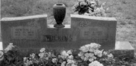 WILKINS, NEWTON - Logan County, Arkansas | NEWTON WILKINS - Arkansas Gravestone Photos