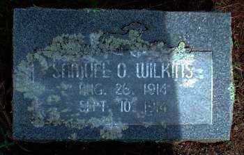 WILKINS, SAMUEL O - Logan County, Arkansas   SAMUEL O WILKINS - Arkansas Gravestone Photos