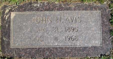 AVIS, JOHN H - Lonoke County, Arkansas | JOHN H AVIS - Arkansas Gravestone Photos