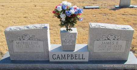 CAMPBELL, JAMES E - Lonoke County, Arkansas | JAMES E CAMPBELL - Arkansas Gravestone Photos