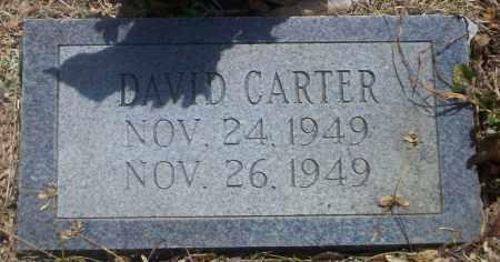 CARTER, DAVID - Lonoke County, Arkansas | DAVID CARTER - Arkansas Gravestone Photos