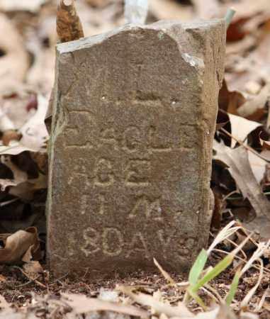EAGLE, M L - Lonoke County, Arkansas | M L EAGLE - Arkansas Gravestone Photos