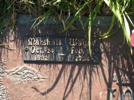 JONES, MARSHALL WAYNE - Lonoke County, Arkansas | MARSHALL WAYNE JONES - Arkansas Gravestone Photos