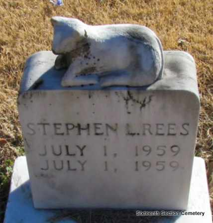 REES, STEPHEN L - Lonoke County, Arkansas   STEPHEN L REES - Arkansas Gravestone Photos
