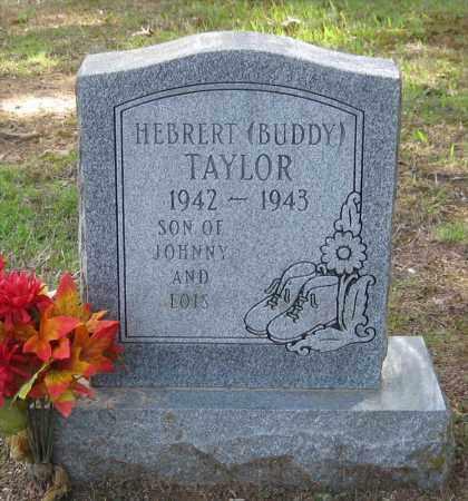 TAYLOR, HEBRERT (BUDDY) - Lonoke County, Arkansas | HEBRERT (BUDDY) TAYLOR - Arkansas Gravestone Photos