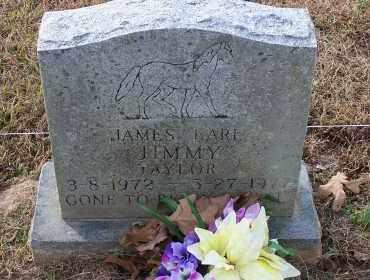 TAYLOR, JAMES EARL - Lonoke County, Arkansas   JAMES EARL TAYLOR - Arkansas Gravestone Photos
