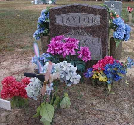 TAYLOR, TIMMY DON - Lonoke County, Arkansas | TIMMY DON TAYLOR - Arkansas Gravestone Photos