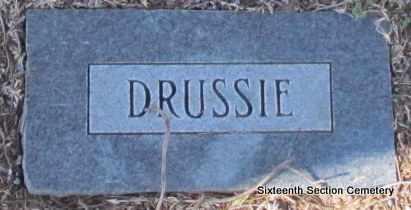 UNKNOWN, DRUSSIE - Lonoke County, Arkansas | DRUSSIE UNKNOWN - Arkansas Gravestone Photos