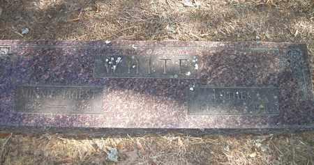 PRIEST WHITE, MINNIE - Lonoke County, Arkansas | MINNIE PRIEST WHITE - Arkansas Gravestone Photos