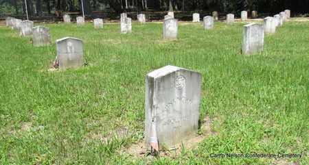 WILEY (VETERAN CSA), BENJAMIN A - Lonoke County, Arkansas | BENJAMIN A WILEY (VETERAN CSA) - Arkansas Gravestone Photos