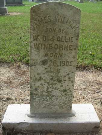 WINBORNE, JAMES WILLIAM - Lonoke County, Arkansas | JAMES WILLIAM WINBORNE - Arkansas Gravestone Photos