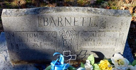 BARNETT, ALICE - Madison County, Arkansas | ALICE BARNETT - Arkansas Gravestone Photos
