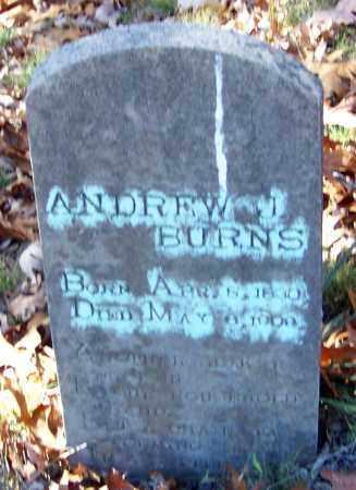 BURNS, ANDREW J - Madison County, Arkansas   ANDREW J BURNS - Arkansas Gravestone Photos