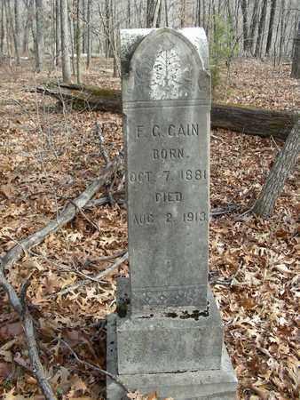 CAIN, FELIX C. - Madison County, Arkansas | FELIX C. CAIN - Arkansas Gravestone Photos