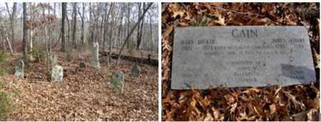 CAIN, JAMES ALBERT - Madison County, Arkansas | JAMES ALBERT CAIN - Arkansas Gravestone Photos