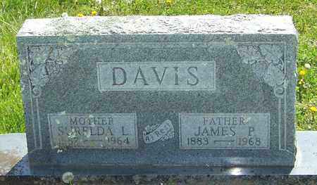 DAVIS, JAMES P - Madison County, Arkansas | JAMES P DAVIS - Arkansas Gravestone Photos
