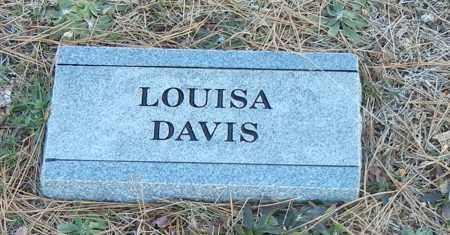 DAVIS, LOUISA - Madison County, Arkansas   LOUISA DAVIS - Arkansas Gravestone Photos