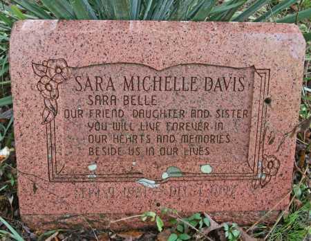 DAVIS, SARA MICHELLE - Madison County, Arkansas   SARA MICHELLE DAVIS - Arkansas Gravestone Photos