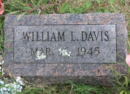 DAVIS, WILLIAM L. - Madison County, Arkansas | WILLIAM L. DAVIS - Arkansas Gravestone Photos