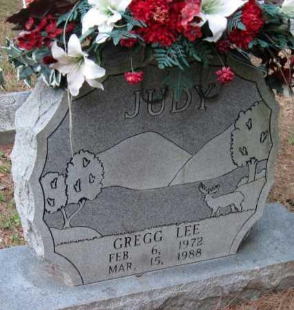 LEE, JUDY GREGG - Madison County, Arkansas   JUDY GREGG LEE - Arkansas Gravestone Photos