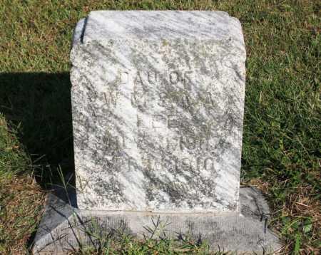 LEE, MARY S. - Madison County, Arkansas | MARY S. LEE - Arkansas Gravestone Photos