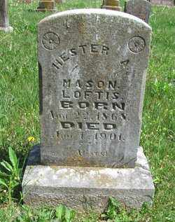 LOFTIS, HESTER A. - Madison County, Arkansas | HESTER A. LOFTIS - Arkansas Gravestone Photos