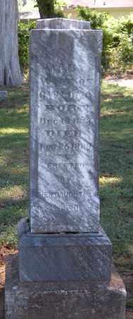 LONG, MARY - Madison County, Arkansas | MARY LONG - Arkansas Gravestone Photos