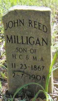 MILLIGAN, JOHN REED - Madison County, Arkansas | JOHN REED MILLIGAN - Arkansas Gravestone Photos