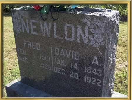 NEWLON, DAVID A {ALBERT} - Madison County, Arkansas | DAVID A {ALBERT} NEWLON - Arkansas Gravestone Photos