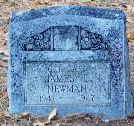 NEWMAN, JAMES LESLIE - Madison County, Arkansas | JAMES LESLIE NEWMAN - Arkansas Gravestone Photos
