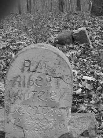 WHITELEY, A. M. ALBERT - Madison County, Arkansas | A. M. ALBERT WHITELEY - Arkansas Gravestone Photos