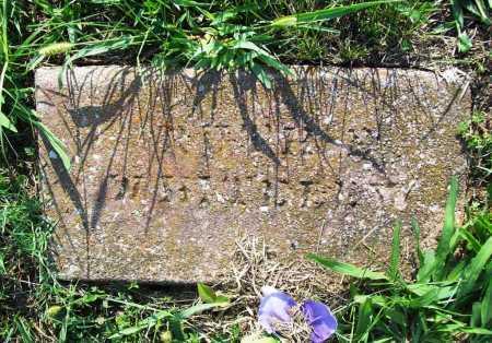 WHITELEY, ROTH P. - Madison County, Arkansas | ROTH P. WHITELEY - Arkansas Gravestone Photos