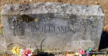 WILLIAMS, ALPHA - Madison County, Arkansas | ALPHA WILLIAMS - Arkansas Gravestone Photos