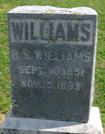 WILLIAMS, BERT S - Madison County, Arkansas | BERT S WILLIAMS - Arkansas Gravestone Photos