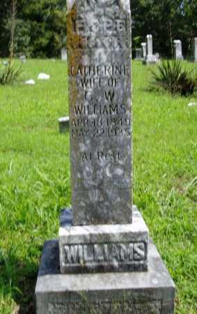 WILLIAMS, CATHERINE - Madison County, Arkansas | CATHERINE WILLIAMS - Arkansas Gravestone Photos