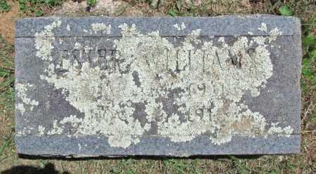 WILLIAMS, ESTHER - Madison County, Arkansas | ESTHER WILLIAMS - Arkansas Gravestone Photos