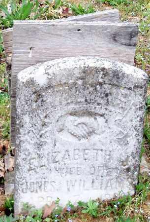 WILLIAMS, ELIZABETH JANE - Madison County, Arkansas | ELIZABETH JANE WILLIAMS - Arkansas Gravestone Photos
