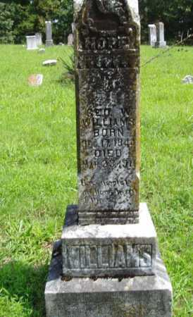 WILLIAMS, GEORGE W. - Madison County, Arkansas   GEORGE W. WILLIAMS - Arkansas Gravestone Photos