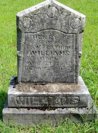 WILLIAMS, HENRY S. - Madison County, Arkansas | HENRY S. WILLIAMS - Arkansas Gravestone Photos