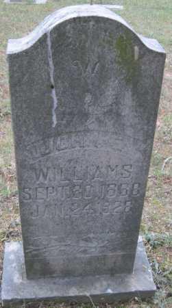 WILLIAMS, JOHN E - Madison County, Arkansas | JOHN E WILLIAMS - Arkansas Gravestone Photos