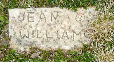 WILLIAMS, JEAN - Madison County, Arkansas | JEAN WILLIAMS - Arkansas Gravestone Photos