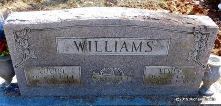 WILLIAMS, ELMER - Madison County, Arkansas | ELMER WILLIAMS - Arkansas Gravestone Photos