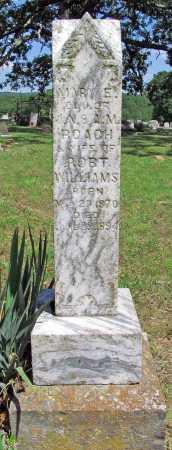 WILLIAMS, MARY E - Madison County, Arkansas | MARY E WILLIAMS - Arkansas Gravestone Photos