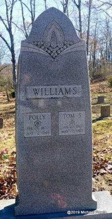 WILLIAMS, TOM S. - Madison County, Arkansas   TOM S. WILLIAMS - Arkansas Gravestone Photos