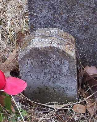 YOUNGER, MARY ANN - Marion County, Arkansas   MARY ANN YOUNGER - Arkansas Gravestone Photos
