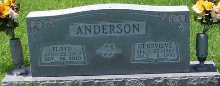 ANDERSON, FLOYD - Marion County, Arkansas | FLOYD ANDERSON - Arkansas Gravestone Photos