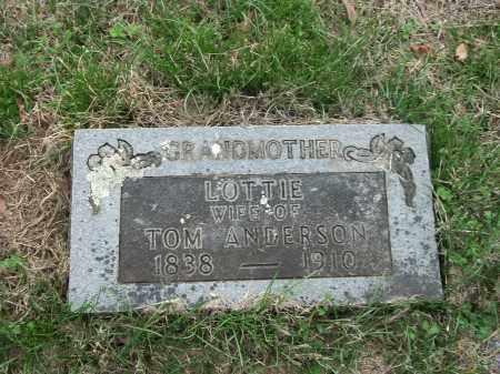 ANDERSON, LOTTIE - Marion County, Arkansas | LOTTIE ANDERSON - Arkansas Gravestone Photos